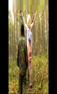 淫色谷-森林桦木